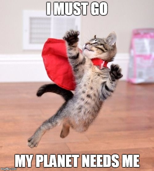 My Planet Need Me | I MUST GO MY PLANET NEEDS ME | image tagged in cats,cute cats,super hero,kitten,flying | made w/ Imgflip meme maker