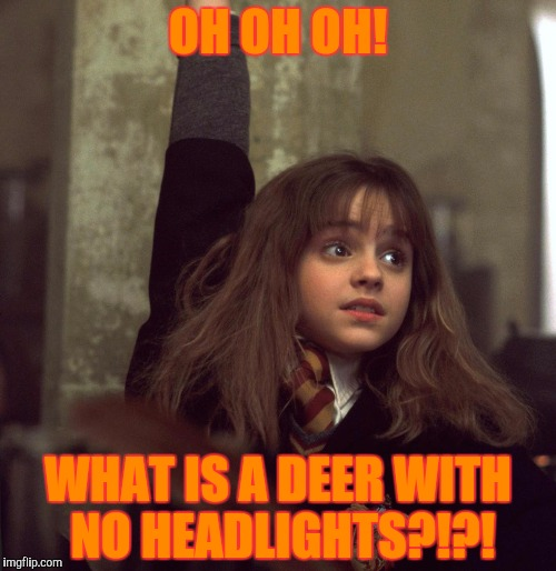 OH OH OH! WHAT IS A DEER WITH NO HEADLIGHTS?!?! | made w/ Imgflip meme maker