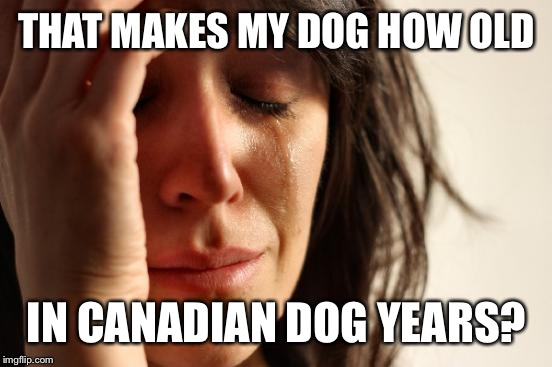 First World Problems Meme | THAT MAKES MY DOG HOW OLD IN CANADIAN DOG YEARS? | image tagged in memes,first world problems | made w/ Imgflip meme maker