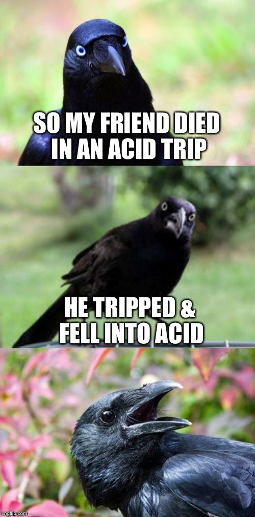 Drugs are bad, 'mkay? | SO MY FRIEND DIED IN AN ACID TRIP HE TRIPPED & FELL INTO ACID | image tagged in bad pun crow,memes,acid trip | made w/ Imgflip meme maker