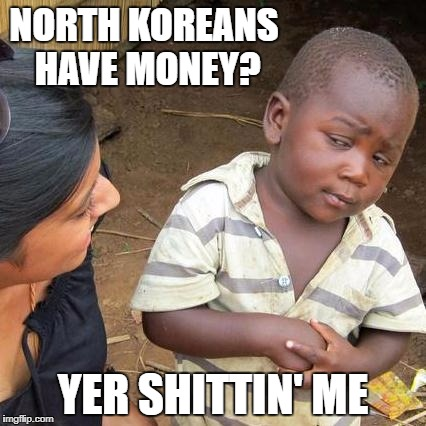 Third World Skeptical Kid Meme | NORTH KOREANS HAVE MONEY? YER SHITTIN' ME | image tagged in memes,third world skeptical kid | made w/ Imgflip meme maker
