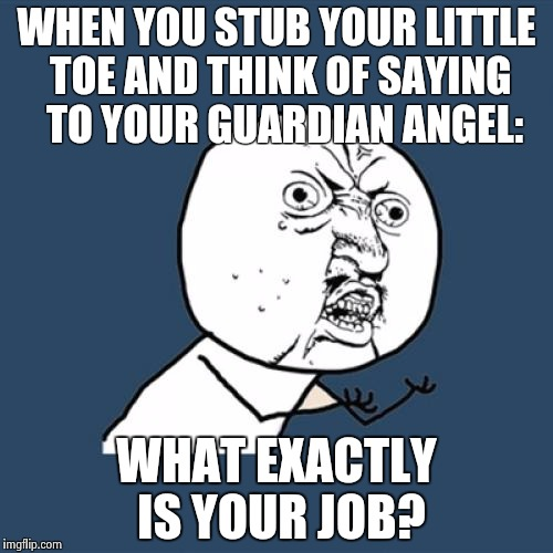 Y U No Meme | WHEN YOU STUB YOUR LITTLE TOE AND THINK OF SAYING  TO YOUR GUARDIAN ANGEL: WHAT EXACTLY IS YOUR JOB? | image tagged in memes,y u no | made w/ Imgflip meme maker