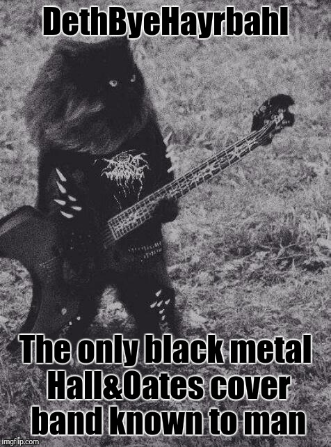 "Some will say ""Whatever possessed you to...?"" Some will reply ""Satan obviously!"" The truth? ILikeCatsandMusicandI'mWeird 