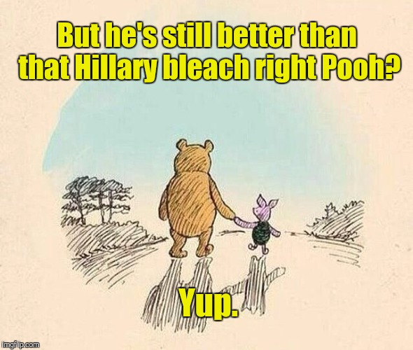 I do hate that I have to keep reminding myself of this. Thank you so much Mr. President. | But he's still better than that Hillary bleach right Pooh? Yup. | image tagged in funny,pooh and piglet,politics,animals,memes,trump | made w/ Imgflip meme maker