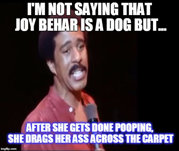 Richard Pryor | I'M NOT SAYING THAT JOY BEHAR IS A DOG BUT... AFTER SHE GETS DONE POOPING, SHE DRAGS HER ASS ACROSS THE CARPET | image tagged in richard pryor | made w/ Imgflip meme maker