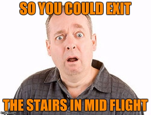 SO YOU COULD EXIT THE STAIRS IN MID FLIGHT | made w/ Imgflip meme maker
