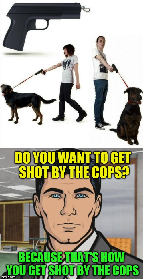 Stupid is as stupid does! | DO YOU WANT TO GET SHOT BY THE COPS? BECAUSE THAT'S HOW YOU GET SHOT BY THE COPS | image tagged in archer,memes,dogs,gun leash,wtf,stupid ideas | made w/ Imgflip meme maker