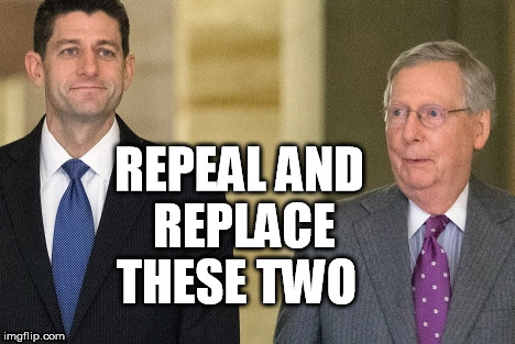 REPEAL AND REPLACE; THESE TWO | image tagged in ryan,mcconnell,gop,obamacare,donald trump approves,failed | made w/ Imgflip meme maker