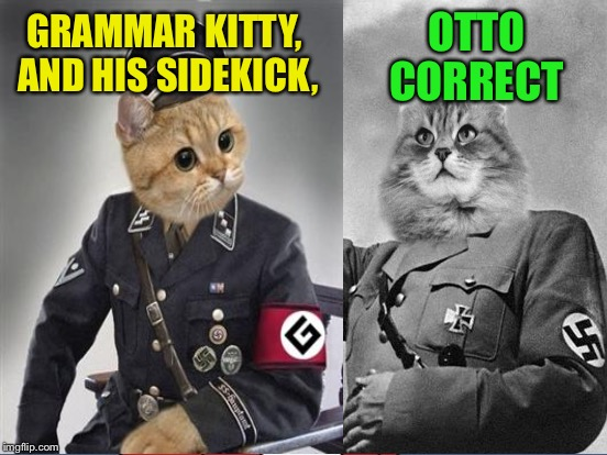 Teacher's Pets | GRAMMAR KITTY, AND HIS SIDEKICK, OTTO CORRECT | image tagged in memes,grammar nazi cat | made w/ Imgflip meme maker