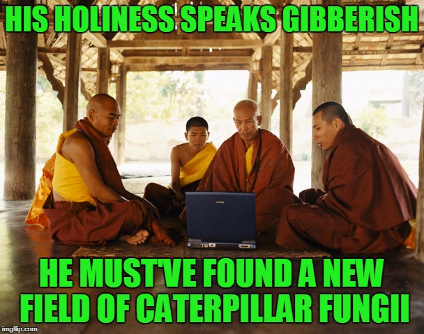 HIS HOLINESS SPEAKS GIBBERISH HE MUST'VE FOUND A NEW FIELD OF CATERPILLAR FUNGII | made w/ Imgflip meme maker