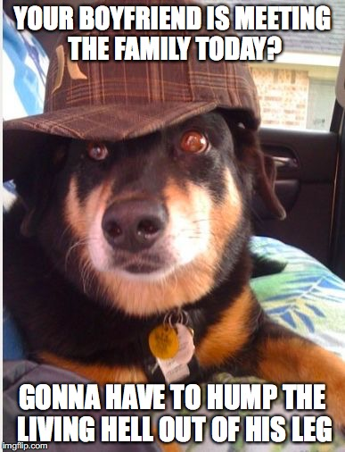Scumbag Dog | YOUR BOYFRIEND IS MEETING THE FAMILY TODAY? GONNA HAVE TO HUMP THE LIVING HELL OUT OF HIS LEG | image tagged in scumbag dog | made w/ Imgflip meme maker