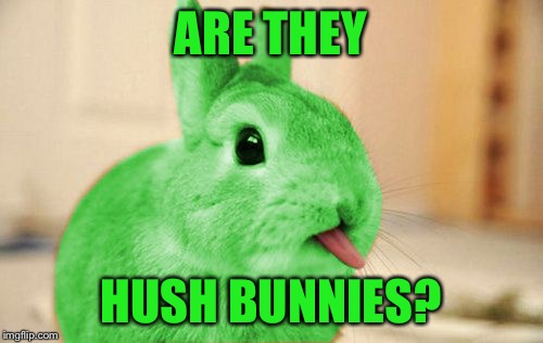 RayBunny | ARE THEY HUSH BUNNIES? | image tagged in raybunny | made w/ Imgflip meme maker