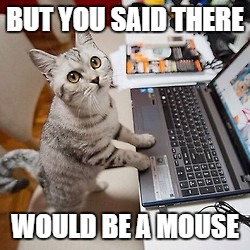 Computer Cat | BUT YOU SAID THERE WOULD BE A MOUSE | image tagged in computer cat | made w/ Imgflip meme maker