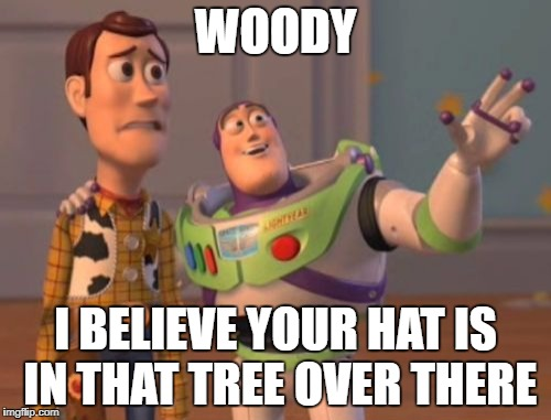 X, X Everywhere | WOODY I BELIEVE YOUR HAT IS IN THAT TREE OVER THERE | image tagged in memes,x,x everywhere,x x everywhere | made w/ Imgflip meme maker