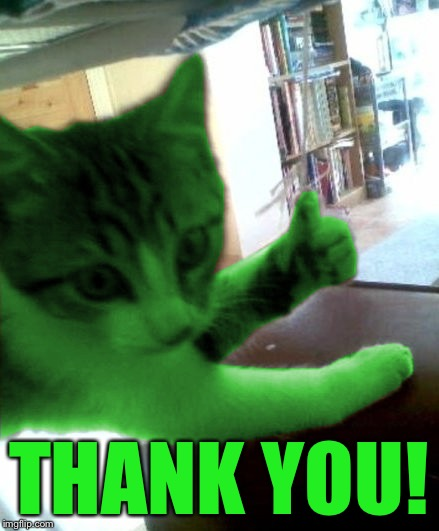 thumbs up RayCat | THANK YOU! | image tagged in thumbs up raycat | made w/ Imgflip meme maker