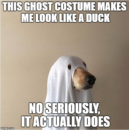 Ghost Doge | THIS GHOST COSTUME MAKES ME LOOK LIKE A DUCK NO SERIOUSLY, IT ACTUALLY DOES | image tagged in ghost doge | made w/ Imgflip meme maker