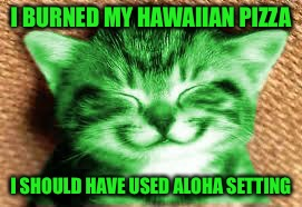 happy RayCat | I BURNED MY HAWAIIAN PIZZA I SHOULD HAVE USED ALOHA SETTING | image tagged in happy raycat | made w/ Imgflip meme maker