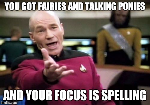 Picard Wtf Meme | YOU GOT FAIRIES AND TALKING PONIES AND YOUR FOCUS IS SPELLING | image tagged in memes,picard wtf | made w/ Imgflip meme maker