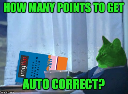 RayCat redeeming points | HOW MANY POINTS TO GET AUTO CORRECT? | image tagged in raycat redeeming points | made w/ Imgflip meme maker