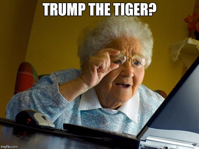 Grandma Finds The Internet Meme | TRUMP THE TIGER? | image tagged in memes,grandma finds the internet | made w/ Imgflip meme maker