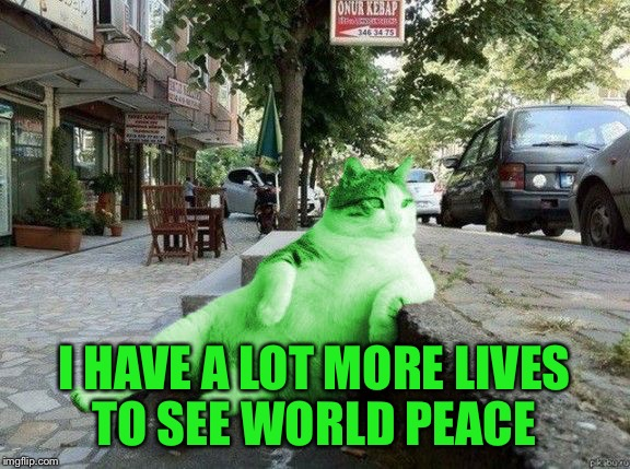 RayCat relaxing | I HAVE A LOT MORE LIVES TO SEE WORLD PEACE | image tagged in raycat relaxing | made w/ Imgflip meme maker
