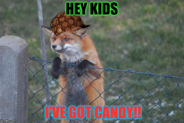 FOX WANNA BUY | HEY KIDS I'VE GOT CANDY!! | image tagged in fox wanna buy,scumbag | made w/ Imgflip meme maker