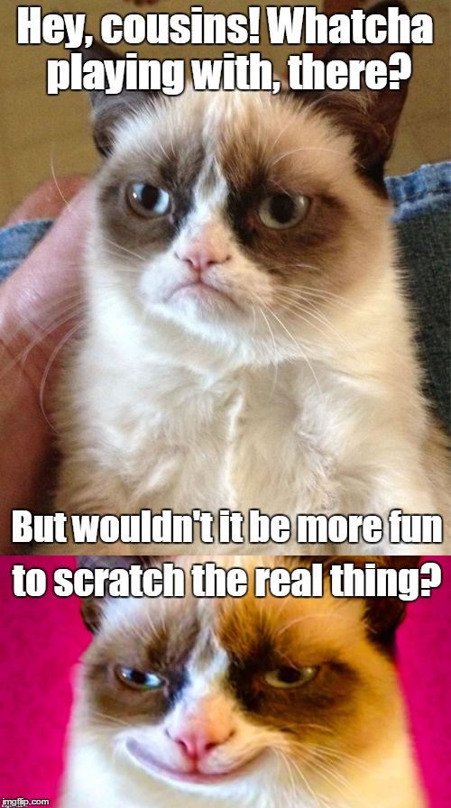 Hey, cousins! Whatcha playing with, there? to scratch the real thing? But wouldn't it be more fun | made w/ Imgflip meme maker