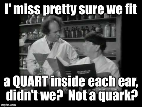 I' miss pretty sure we fit a QUART inside each ear, didn't we?  Not a quark? | made w/ Imgflip meme maker