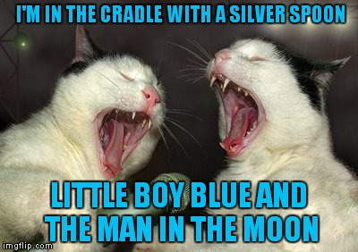 I'M IN THE CRADLE WITH A SILVER SPOON LITTLE BOY BLUE AND THE MAN IN THE MOON | made w/ Imgflip meme maker