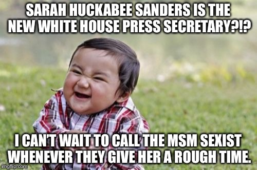 Make the MSM live up to the Liberalism they defend. | SARAH HUCKABEE SANDERS IS THE NEW WHITE HOUSE PRESS SECRETARY?!? I CAN'T WAIT TO CALL THE MSM SEXIST WHENEVER THEY GIVE HER A ROUGH TIME. | image tagged in 2017,white house,press secretary,sarah huckabee sanders,msm | made w/ Imgflip meme maker