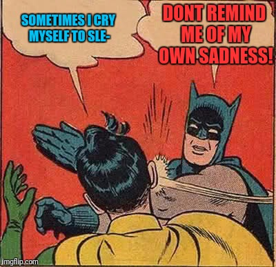 Batman Slapping Robin Meme | SOMETIMES I CRY MYSELF TO SLE- DONT REMIND ME OF MY OWN SADNESS! | image tagged in memes,batman slapping robin | made w/ Imgflip meme maker