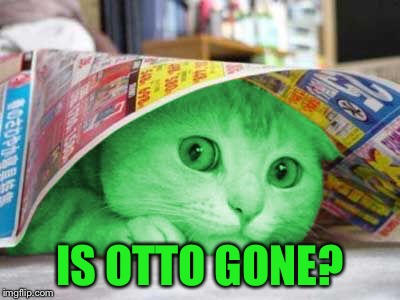 RayCat Scared | IS OTTO GONE? | image tagged in raycat scared | made w/ Imgflip meme maker
