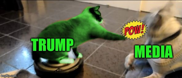 RayTrump paws the Media! | TRUMP MEDIA | image tagged in raycat roomba,memes | made w/ Imgflip meme maker