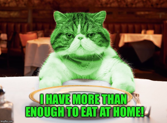 RayCat Hungry | I HAVE MORE THAN ENOUGH TO EAT AT HOME! | image tagged in raycat hungry | made w/ Imgflip meme maker