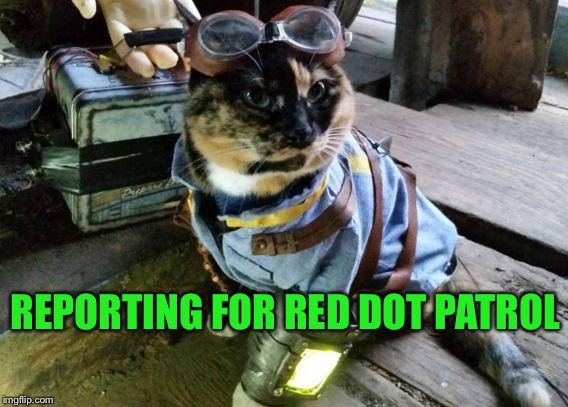 Fallout RayCat | REPORTING FOR RED DOT PATROL | image tagged in fallout raycat | made w/ Imgflip meme maker