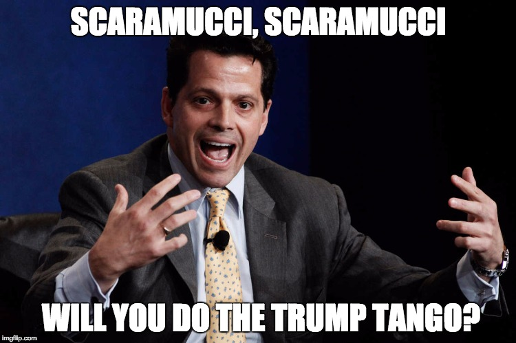 SCARAMUCCI, SCARAMUCCI WILL YOU DO THE TRUMP TANGO? | image tagged in scaramucci | made w/ Imgflip meme maker