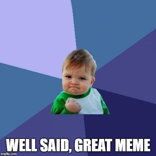 Success Kid Meme | WELL SAID, GREAT MEME | image tagged in memes,success kid | made w/ Imgflip meme maker