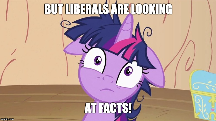 Messy Twilight Sparkle | BUT LIBERALS ARE LOOKING AT FACTS! | image tagged in messy twilight sparkle | made w/ Imgflip meme maker