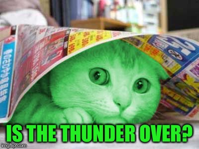 RayCat Scared | IS THE THUNDER OVER? | image tagged in raycat scared | made w/ Imgflip meme maker
