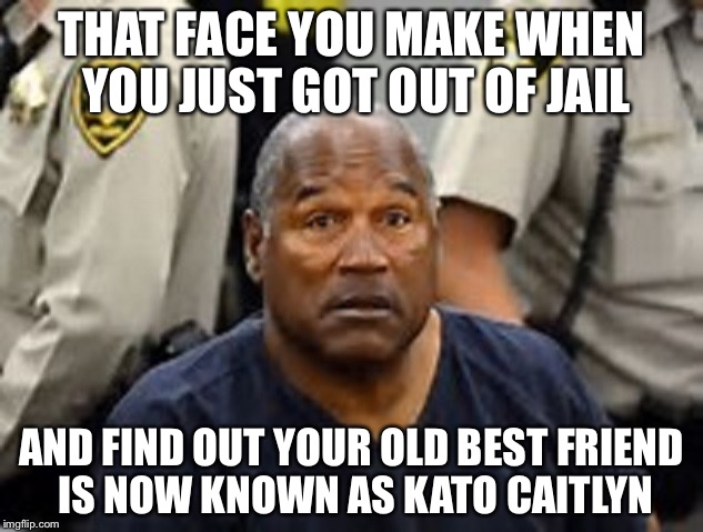 THAT FACE YOU MAKE WHEN YOU JUST GOT OUT OF JAIL AND FIND OUT YOUR OLD BEST FRIEND IS NOW KNOWN AS KATO CAITLYN | image tagged in oj simpson,memes,funny,bad pun,bad puns,gender identity | made w/ Imgflip meme maker