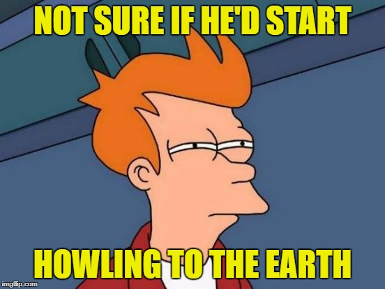 Futurama Fry Meme | NOT SURE IF HE'D START HOWLING TO THE EARTH | image tagged in memes,futurama fry | made w/ Imgflip meme maker