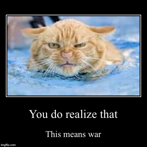 You do realize that | This means war | image tagged in funny,demotivationals | made w/ Imgflip demotivational maker