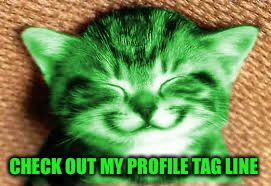 happy RayCat | CHECK OUT MY PROFILE TAG LINE | image tagged in happy raycat | made w/ Imgflip meme maker