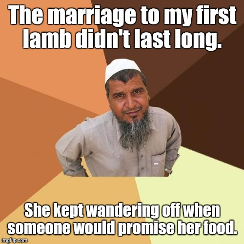 1bi3.jpg | The marriage to my first lamb didn't last long. She kept wandering off when someone would promise her food. | image tagged in 1bi3jpg | made w/ Imgflip meme maker
