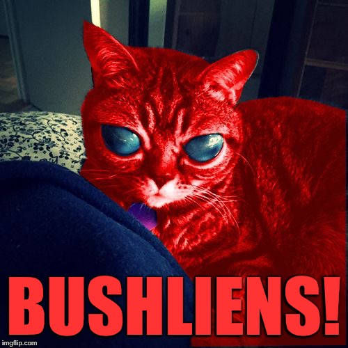 RayCat Aliens | BUSHLIENS! | image tagged in raycat aliens | made w/ Imgflip meme maker