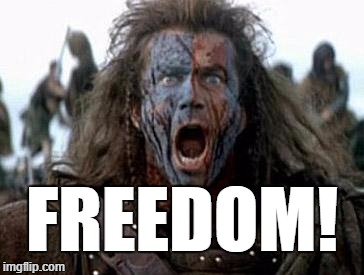 Freedom | FREEDOM! | image tagged in braveheart,mel gibson,freedom | made w/ Imgflip meme maker