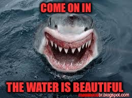 Shark week! (A CaptainKirk10 event) July 23- July 30 | COME ON IN THE WATER IS BEAUTIFUL | image tagged in smiling shark,shark week | made w/ Imgflip meme maker