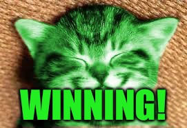happy RayCat | WINNING! | image tagged in happy raycat | made w/ Imgflip meme maker