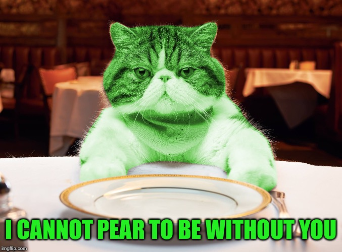 RayCat Hungry | I CANNOT PEAR TO BE WITHOUT YOU | image tagged in raycat hungry | made w/ Imgflip meme maker