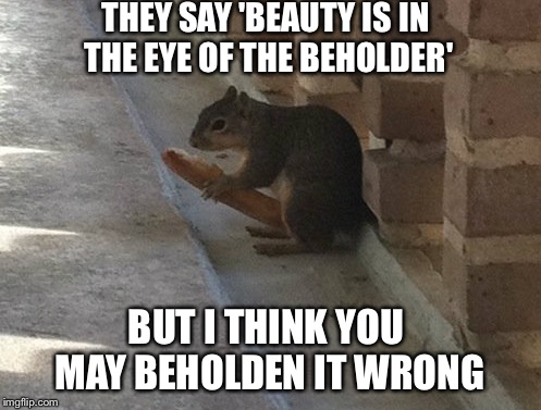 Lonely Squirrel | THEY SAY 'BEAUTY IS IN THE EYE OF THE BEHOLDER' BUT I THINK YOU MAY BEHOLDEN IT WRONG | image tagged in happy squirrel | made w/ Imgflip meme maker